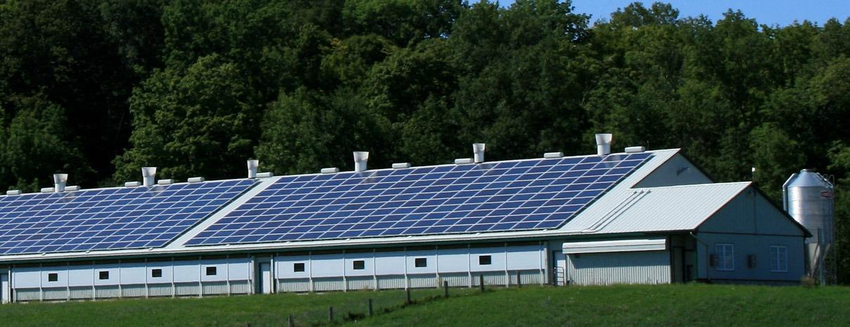 Płacisz za dużo za energię elektryczną?